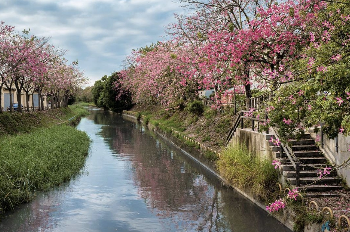 北斗河濱公園(大象廣場)