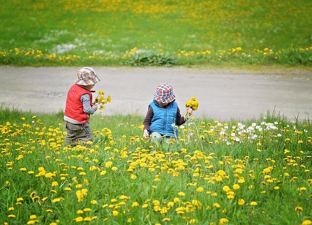 Pixabay_Pezibear-pick-flowers
