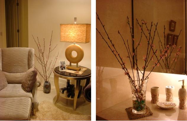 銀柳和桃花