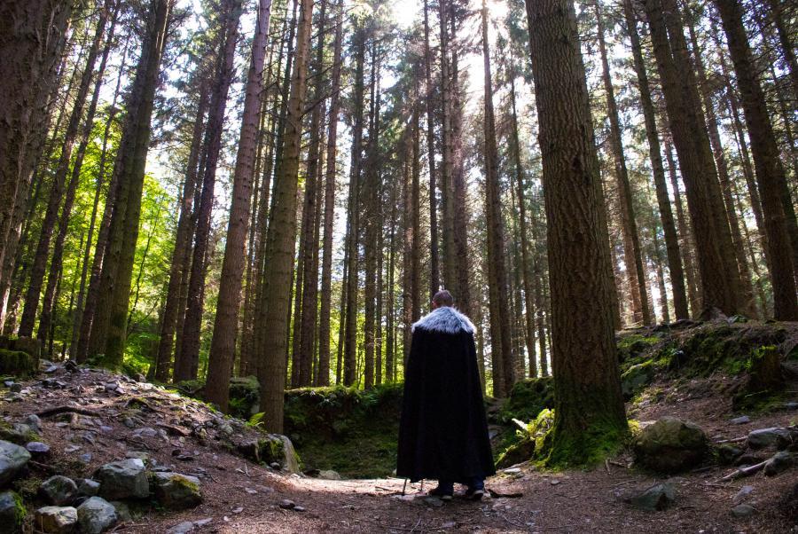 托利莫爾國家森林公園是北愛爾蘭第一個國家森林公園,保存了豐富多元的自然生態(圖片來源:traveldudes)