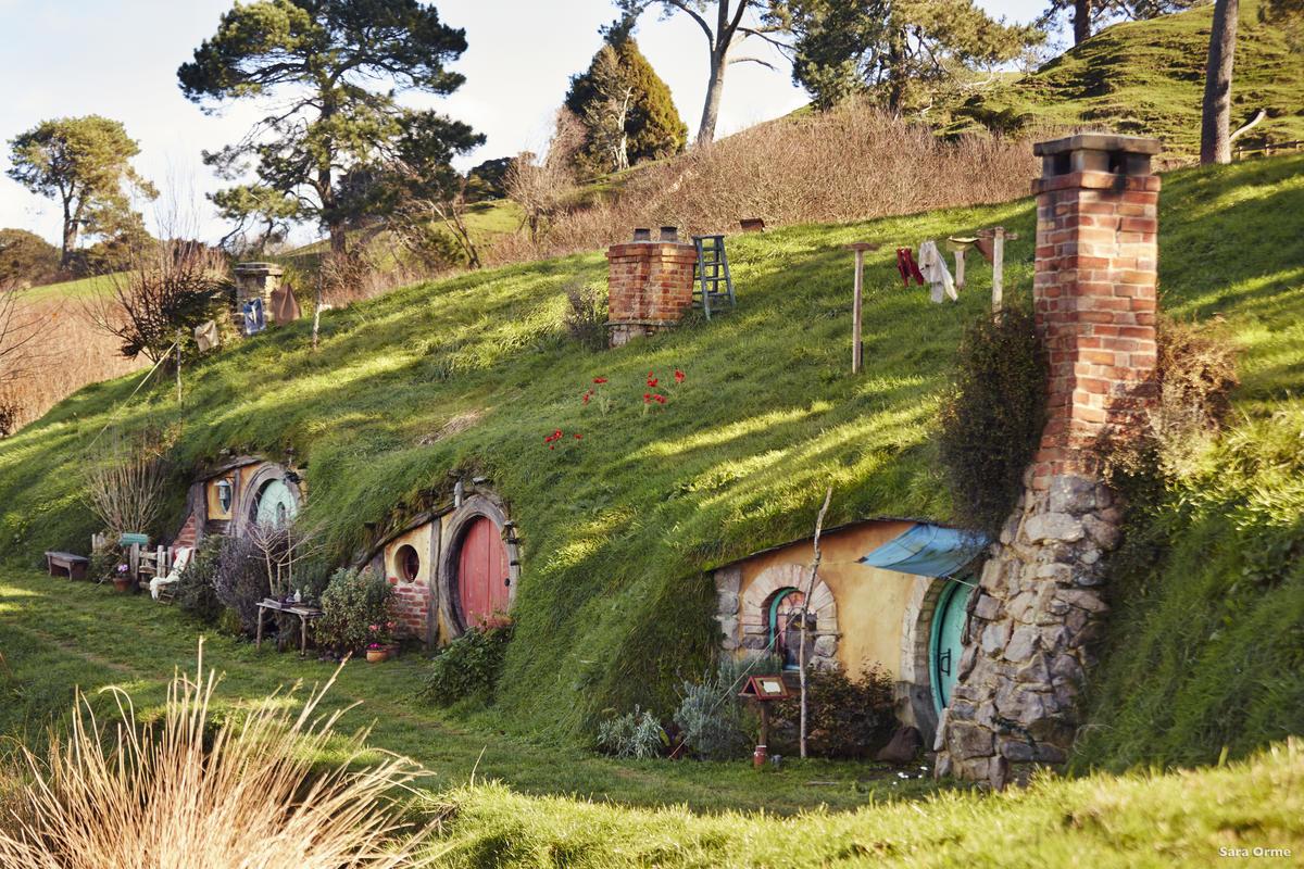 溫馨可愛的哈比屯位於紐西蘭北島,是電影為了拍攝特地搭建的(圖片來源:newzealand.com)
