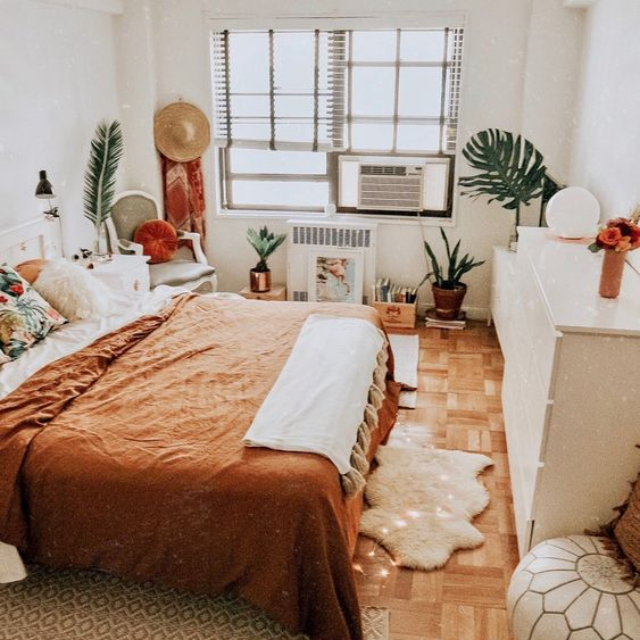 orange bed.jpg