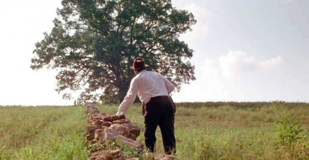 shawshank-oak-tree-2-1024x532