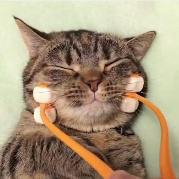 Cat-Face-Massager