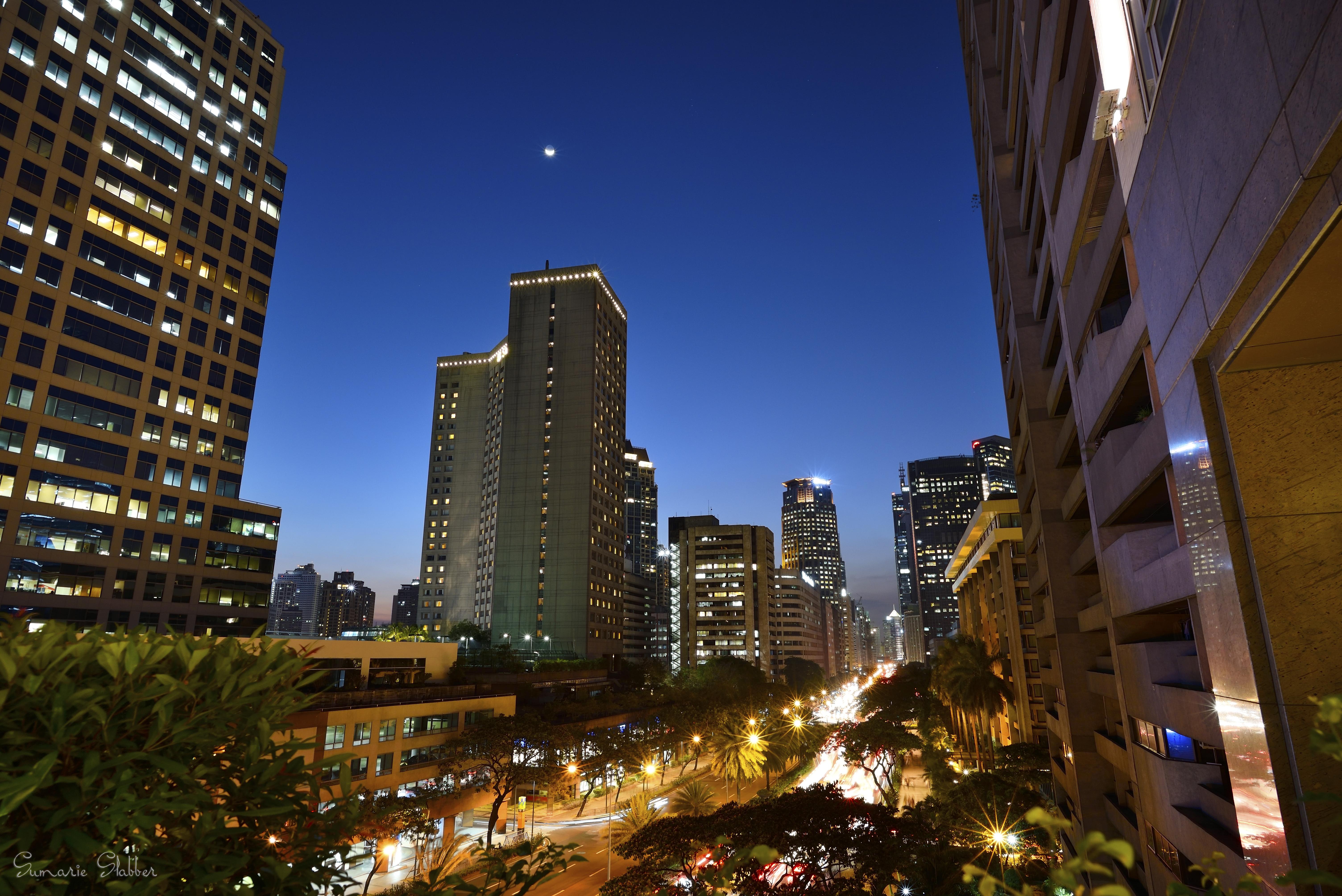 Ayala Ave